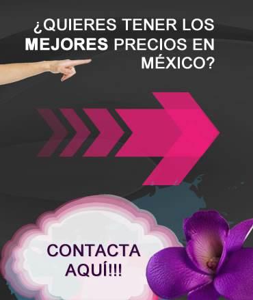 Distribuidores de cosméticos al mayoreo en México